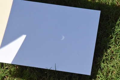 Sheet of white paper on grass with projected eclipse image.