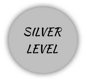 Silver Circle with words SILVER LEVEL inside